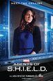 Agents-of-shield-meet-the-cellist.jpg