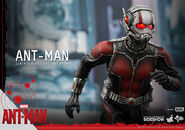 Ant-Man Hot Toys 12