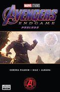 Avengers Endgame Prelude