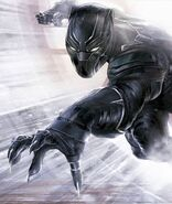 Black Panther's attack