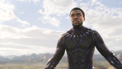 BlackPanther MethodStudios ITW 07