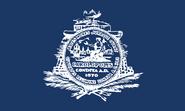 Flag of Charleston