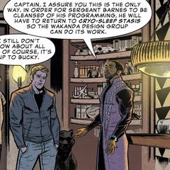 T'Challa le porporciona refugio a Rogers y Barnes en Wakanda.