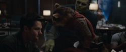 Rocket Raccoon & Scott Lang