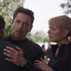Potts y Stark se reunen con Banner.