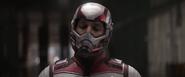 Ant-Man (Avengers Quantum Suit)