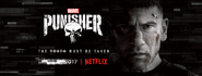 Banner Punnisher Netfix