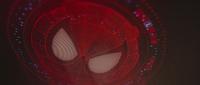 Araña-señal - CW