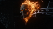 6554027-coulson ghost rider