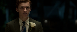 Peter Parker (Homecoming)