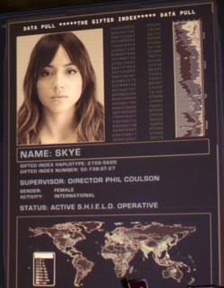 Index Skye