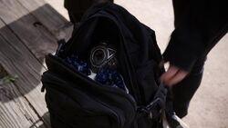 Singularity Daisy's Backpack