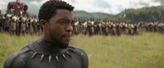 T'Challa (Battle of Wakanda)