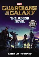 Guardians Junior Novel
