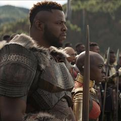 W'Kabi ayuda a sus amigos a defender Wakanda de los Outriders.