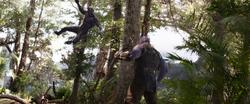 T'Challa vs. Thanos
