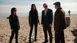 Phil-Coulson-Sif-Melinda-May-Beach-Investigation
