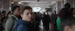 Peter Parker (Endgame)