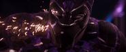 Black Panther Habit (Busan)