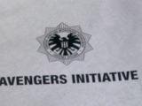 Инициатива «Мстители»