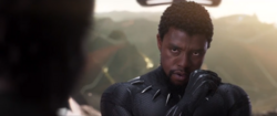 BP - T'Challa discusses bringing Everett Ross