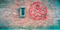 Grafitti Hydra