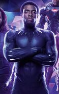 Black Panther (Avengers Infinity War Textless)