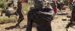 Black Panther (Infinity War)