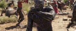 Black Panther (Infinity War)