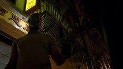 Cage Harlem Pamphlet