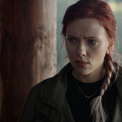 Romanoff trata de convencer a Stark de ayudarlos.