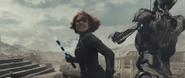 Black Widow Batons 2