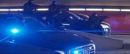 Swarm of Polizei