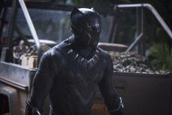 Black-panther-movie-cast-images-7
