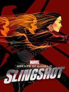 Slingshot Poster 3