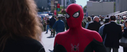 Spider-Man (Far From Home)