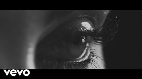 Empara Mi - Wanderlust (Official Video)