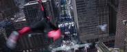 NYC Glide