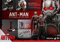 Ant-Man Hot Toys 17.jpg