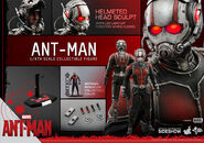 Ant-Man Hot Toys 17