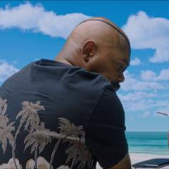 Fury decide finalizar sus vacaciones.