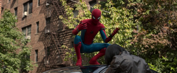 Don't Steal Cars (Spidey Advice)