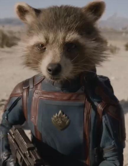 Rocket Raccoon | Marvel Cinematic Universe Wiki | FANDOM ...