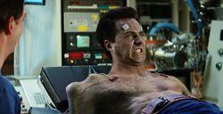 Bruce transforms TIH