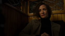Janet Mcteer unknown c
