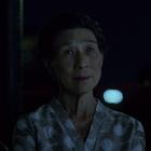 w:c:marvelcinematicuniverse:Madame Gao