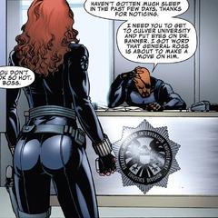 Romanoff es asignada por Fury a vigilar a Bruce Banner.