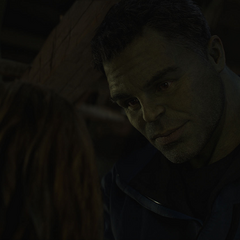 Banner intenta convencer a Thor de reunirse con los Vengadores.