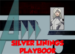 92-Silver Linings Playbook