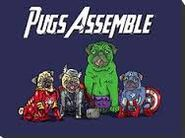 Avenger Pugs